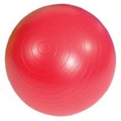 Diordi - Pelota de Pilates y Yoga Terapéutica con Inflador 85cm - Rojo